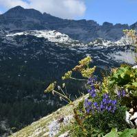 Hiking the Julian Alps